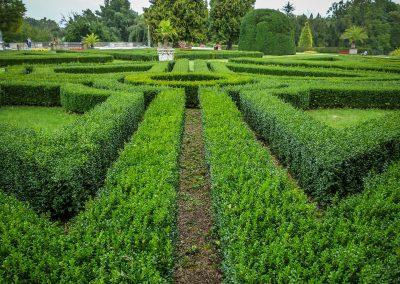Bahçe İlaçlama – Solucan Gübresi – Peyzaj Tasarımı